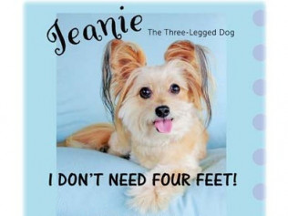 Jeanie The Three-Legged Dog